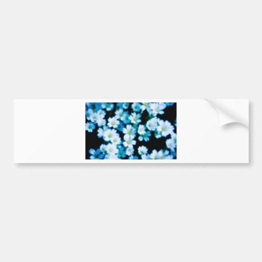 flowers.jpg blanco pegatina para auto