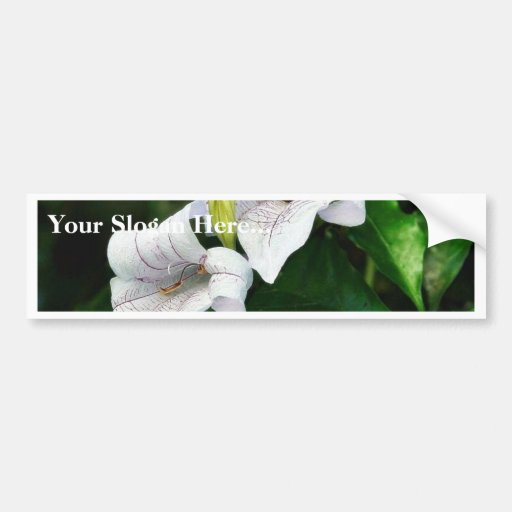 Flowers Leaves Bumper Sticker