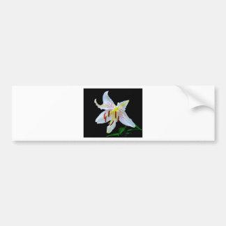 Flowers Lilies Blossoms Wedding Shower Love Peace Car Bumper Sticker
