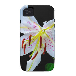 Flowers Lilies Blossoms Wedding Shower Love Peace iPhone 4/4S Cases