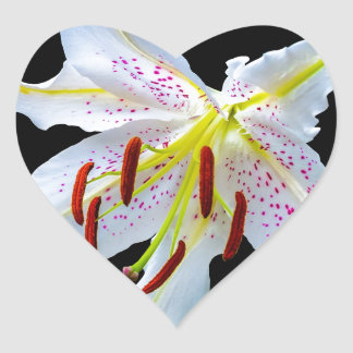 Flowers Lilies Blossoms Wedding Shower Love Peace Heart Sticker