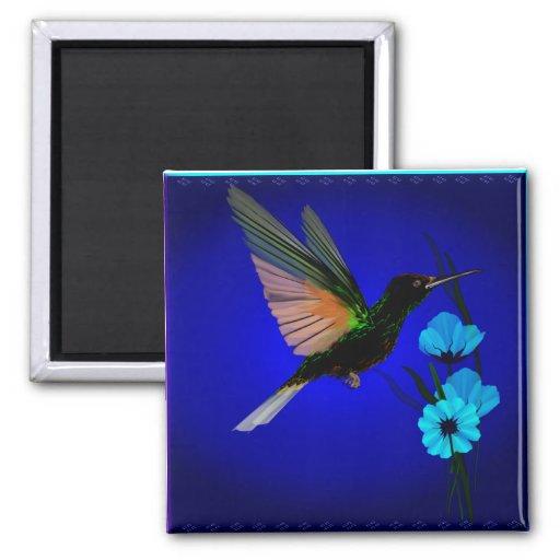Flowers_Magnets Colibrí-Azul verde Imán Cuadrado