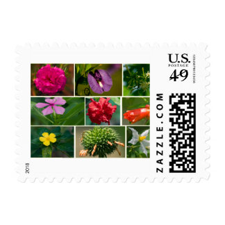 flowers Marie-Galante, island Postage Stamp