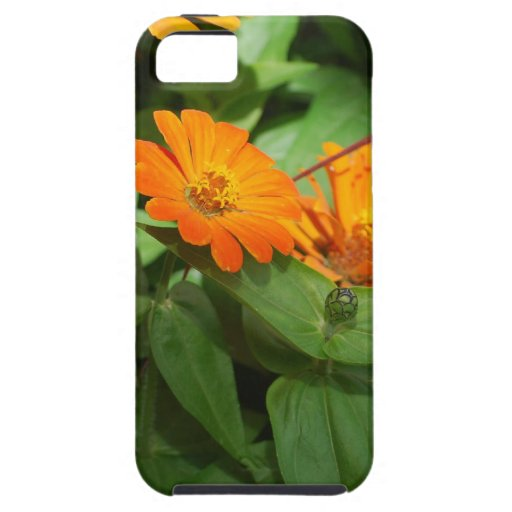 Flowers mf 239 iPhone 5 cases