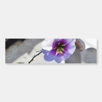 Flowers Missions Leaves Leaf Roofs Car Bumper Sticker