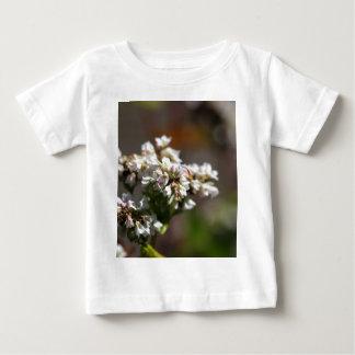 Flowers of a Buckwheat plant (Fagopyrum esculentum Baby T-Shirt