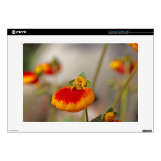 """Flowers of a lady's purse flower 15"""" laptop skins"""