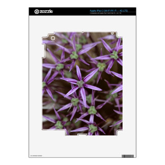 Flowers of a Persian onion iPad 3 Decals