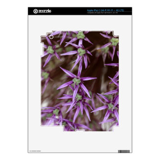 Flowers of a Persian onion Skin For iPad 3