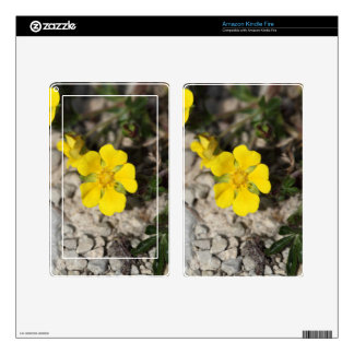 Flowers of a spring cinquefoil or spotted cinquefo kindle fire skins