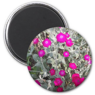 Flowers of a Tour 2 Inch Round Magnet