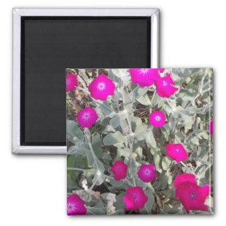 Flowers of a Tour 2 Inch Square Magnet
