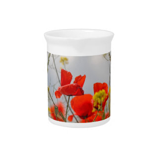 Flowers of common poppy in a field. beverage pitcher