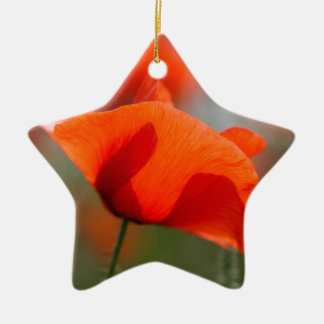 Flowers of common poppy in a field. ceramic ornament