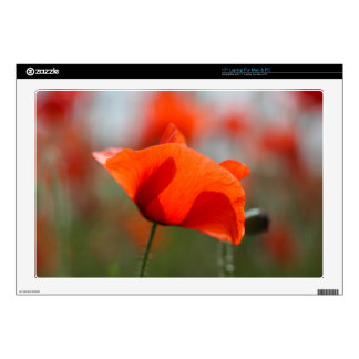 """Flowers of common poppy in a field. decals for 17"""" laptops"""