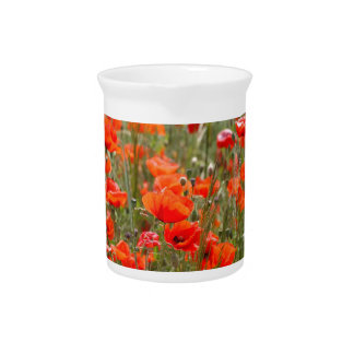 Flowers of common poppy in a field. drink pitcher