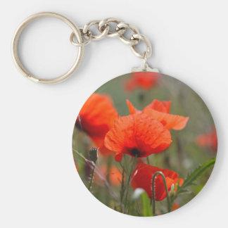 Flowers of common poppy in a field. keychain