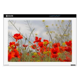 """Flowers of common poppy in a field. skin for 17"""" laptop"""