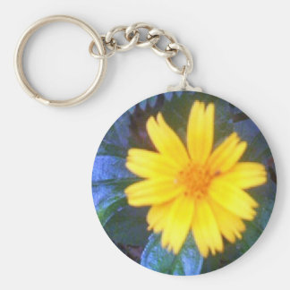 Flowers of Costa Rica 02 Keychains