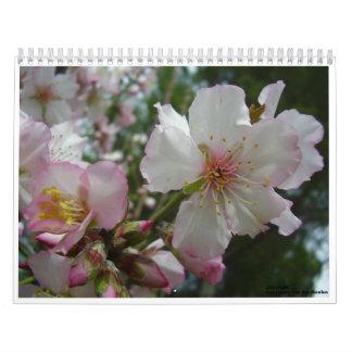Flowers of Israel Calendars