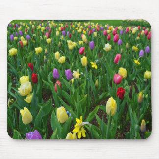 Flowers of Love from Keukenhof Mousepad