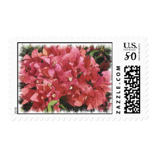 Flowers of Mexico Postage