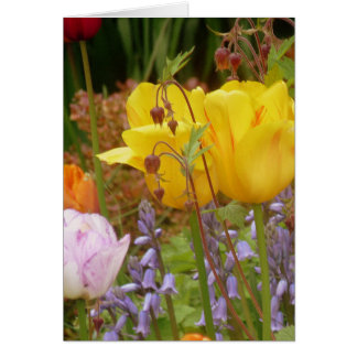 Flowers Of Tenderness Card