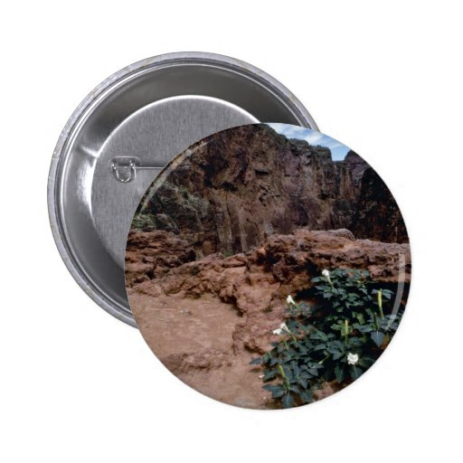 Flowers of the Grand Canyon flowers 2 Inch Round Button