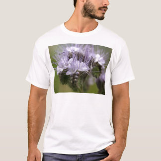 Flowers of the lacy phacelia T-Shirt