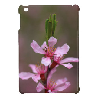 Flowers of the Russian Almond Tree Case For The iPad Mini