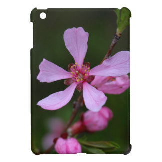 Flowers of the Russian Almond Tree iPad Mini Cases