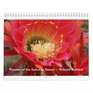 Flowers of the Sonoran Desert -- Richard Rushton Calendar