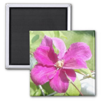 Flowers of the Vine 2 Inch Square Magnet
