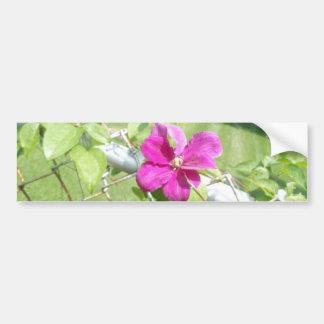 Flowers of the Vine Bumper Sticker