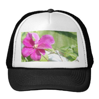 Flowers of the Vine Mesh Hats