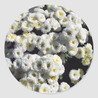 Flowers of White Classic Round Sticker
