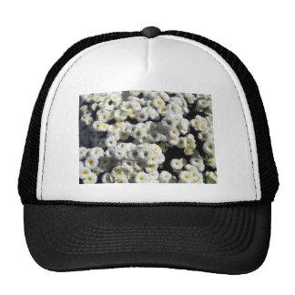 Flowers of White Trucker Hat