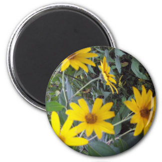 Flowers of Yellow 2 Inch Round Magnet