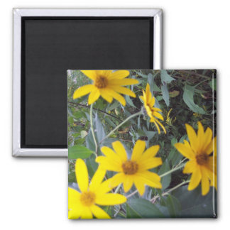 Flowers of Yellow 2 Inch Square Magnet