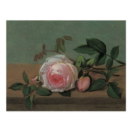 Flowers on a Ledge by Ottesen, Vintage Still Life Postcard