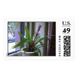 Flowers on a sill stamp