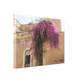 Flowers on a Wall in Rome, Italy Stretched Canvas Prints