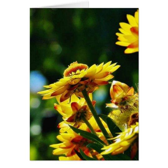 Flowers On Grass Card