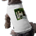 Flowers on Steps Pet Clothing