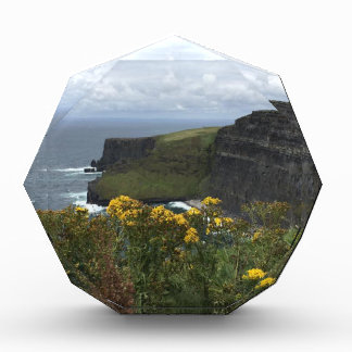 Flowers on the Cliffs of Moher Award