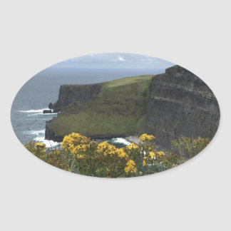 Flowers on the Cliffs of Moher Oval Sticker