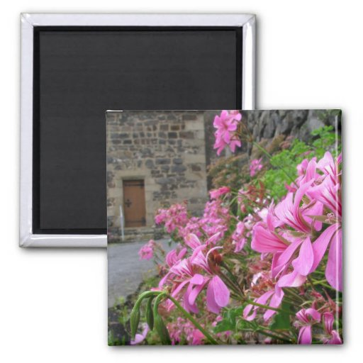 Flowers on the Way Magnet