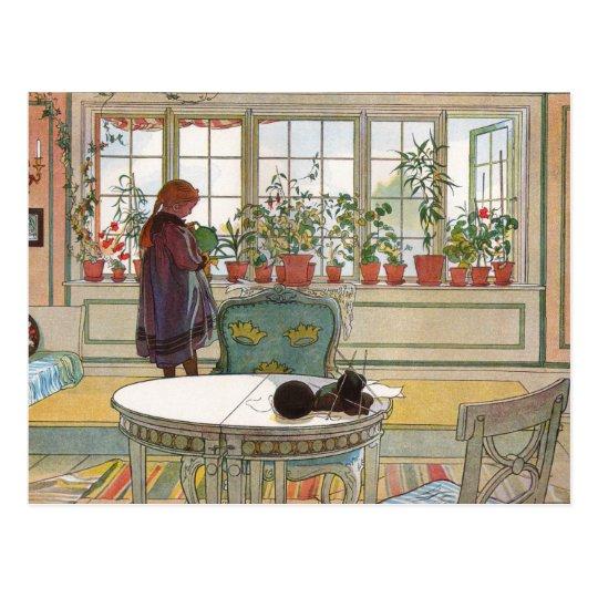 Flowers on the Windowsill by Carl Larsson Art Postcard