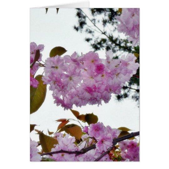 Flowers On Tree Card
