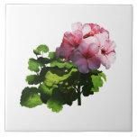 Flowers - Pale Pink Geranium Ceramic Tiles
